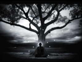 in meditation... by knotty82