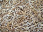 Straw Texture Stock by Rainny-Stock
