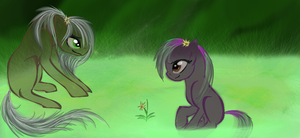 Zels and her foal by Umbra-Nine