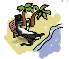 Mr. Kitty Goes to The Beach by frisbii