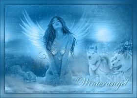 Winterangel by biene239