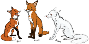 Three Foxes by Spirit-Of-Alaska