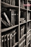 Mi libreria by DarkMPhotography