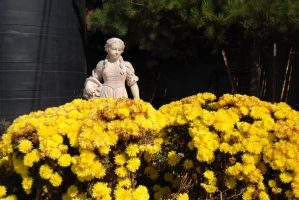 Girl Statue and Flowers-Stock by Thorvold-Stock