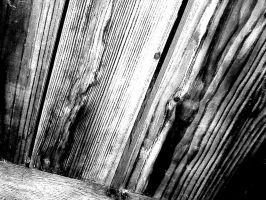 details on a wood grain by wordsnotreason