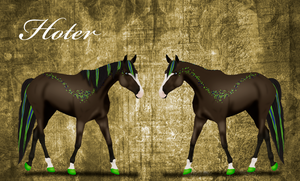 793 AS Hoter- Sold by BlueFire-Phoenix