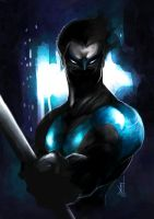 Nightwing by TheRisingSoul