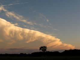 Billowing and Fluffy by Michies-Photographyy