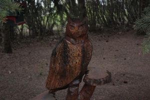 wooden owl by shadoe-gary-paul