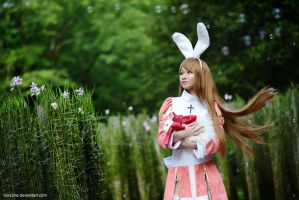 Ragnarok Online - High Priest by vaxzone