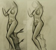 Figure Drawing Class 3 by AlyssaKing