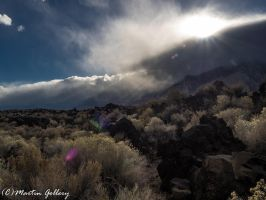 Owens Valley141130-66 by MartinGollery