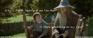 Gandalf and Frodo by angelprincess101