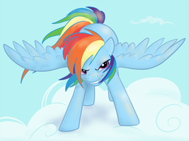 Rainbow Dash : Wanna Race?! by northernlightsmlp