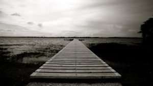 Path to the water by jimmyvilas