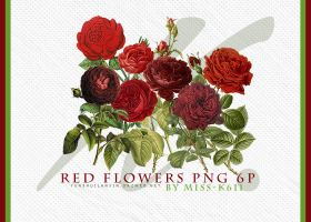 Red Flowers Png by MISS-K611