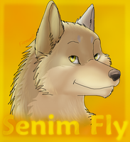 PC: Senim Fly by FireMoon9