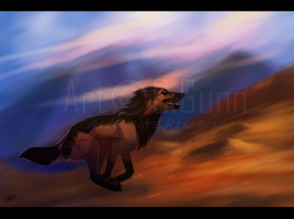 Time to Run by InstantCoyote