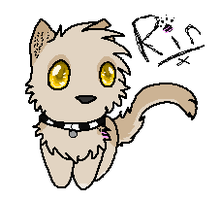 Quick Gift: Rin by InkSheWolf