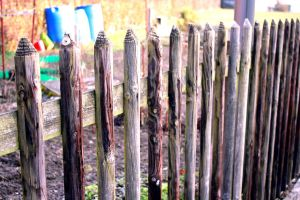 picket fences by go15