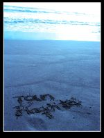TQM flaquita by jaguar404