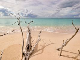 Dali's beach by peterpateman