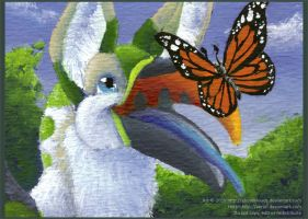 ACEO: Flutter by aboveClouds