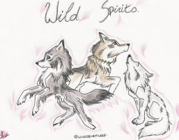 wild spirits by 0-Mooncry-0