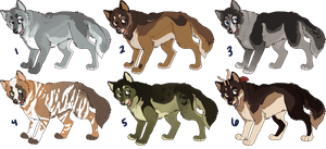Wolfy Adopts by KingCavy