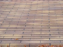 Ashalt Shingle Roof 01 by Limited-Vision-Stock