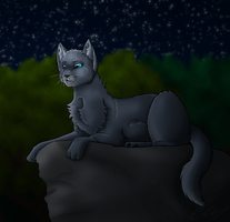 Bluestar by Echoes-Of-Ruins