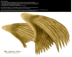 Dual Wings Gold - Med. PNG by Thy-Darkest-Hour