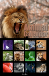 Animal Calendar by FriendFrog