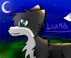 New friend Luna :GA: by RukiaTheWolfie