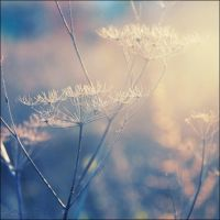 Dream scene I by CrazyMurdock1