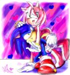 Valentine's Day SonAmy by QTStartheHedgehog