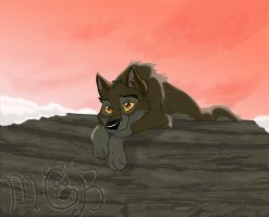 Balto in love by melted-gummy-bears