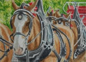 Clydesdales by waughtercolors