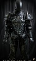 Dragon Crusader Cuirass/Upper Body by Azmal