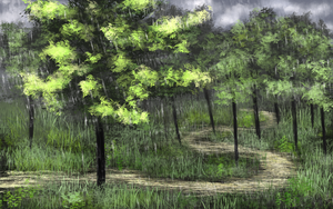 Rainy Forest by RiseUndead