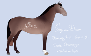Ref California Dream -wip1- by BH-Stables
