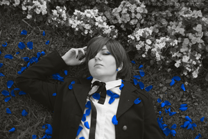Blue Roses [Black Butler] by Akito-OwO