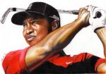 Tiger Woods by dheck