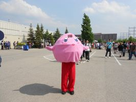 Anime North 2012 - Kirby by TehTig3r