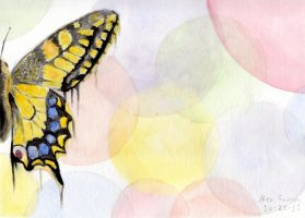 Butterfly Effect by naivebassoon