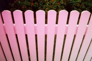 pink picket fence by lloydhughes
