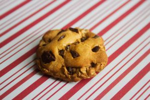 polymer clay chocolate chip cookie magnet by l337Jacqui
