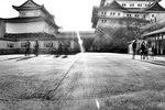 Nagoya Castle by Japanesegurl