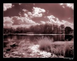 Calmness - IR by king-kong