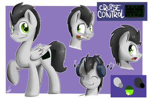 Cruise Control Ref Sheet By ShinodaGE by Cruise-Control